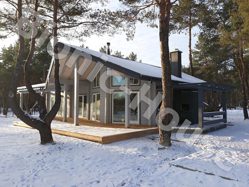 Чем покрасить деревянный дом в лесу - 5 профессиональных советов как его защитить